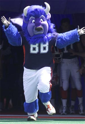 Buffalo Bills Mascot - Billy the Buffalo