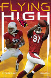 Arizona Cardinals Posters