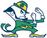 College Football - Notre Dame Fighting Irish Football