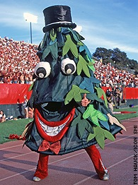 Stanford Tree - Stanford Mascot