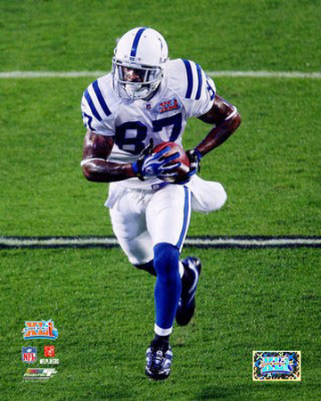Reggie Wayne - Fantasy Football Players